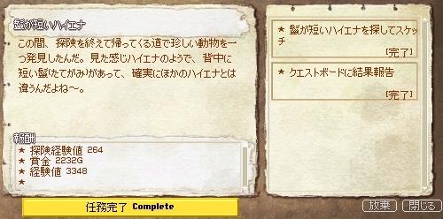 060808-11.jpg