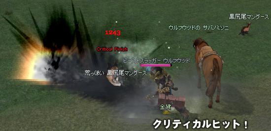 081105-01s.jpg